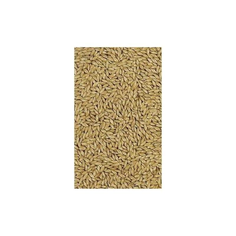 Canary seed versele laga 25 kg