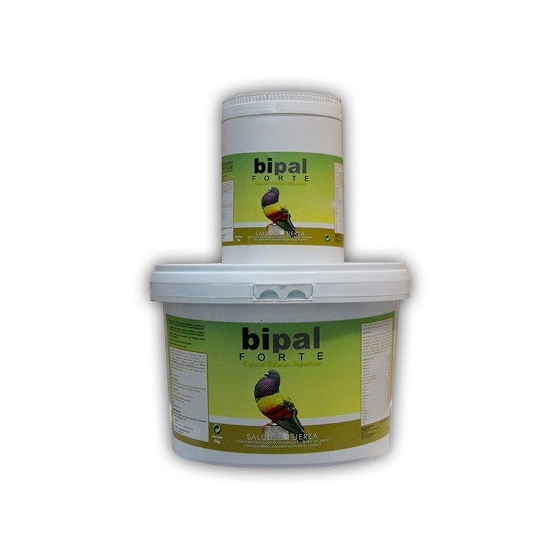 Bipal Forte Special Pigeon Sport 4 kg, (Probiotics, vitamins, minerals, and amino acids). For A Pigeon. FREE 1 KILO