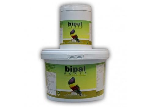 Bipal Forte Especial Palomos Deportivos 4 kg, (Probióticos, vitaminas, minerales y aminoácidos). Para Palomos. GRATIS 1 KILO