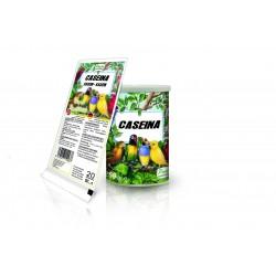 Pineta Caseina, 92% De Proteina, 20gr
