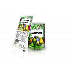 Pineta Casein, 92% Protein, 20 gr