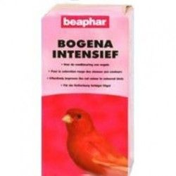Intensive red Bogena