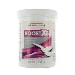 Versele-Laga Boost X5 500gr. Maximum power and endurance during the flight. For Dove