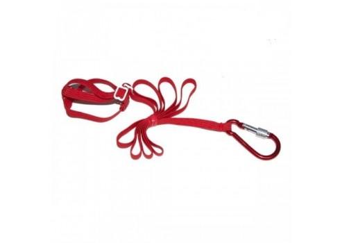 Harness for nymph, rump or kakariki