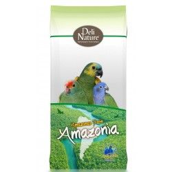 Nº22 - AMAZONAS PARK AMAZONIA