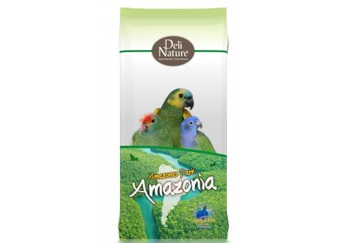 Nº22 - AMAZON PARC AMAZON