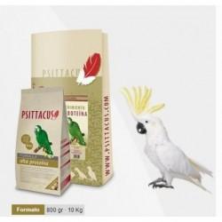 Psittacus Pienso alta proteina 800 gr