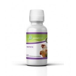 HEPATIC 100ml