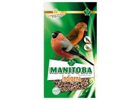 Mélangeur d'indigena du Manitoba, 2,5 kg
