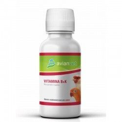 LA VITAMINE B+K AVIANVET 100 ML
