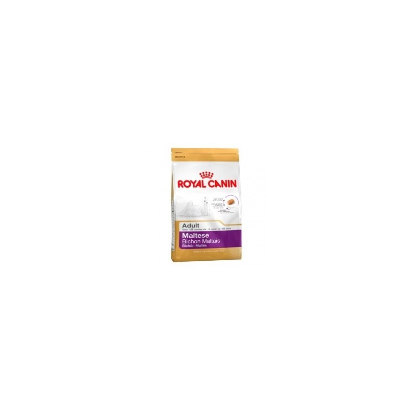 Royal Canin Bichón Maltese 1.5 kg adult + 1 can of wet food gift