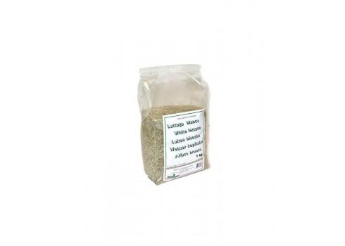 La laitue Blanc Extra Manitoba 1kg