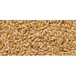 Graines d'oiseaux Canada Disfa 25 kg