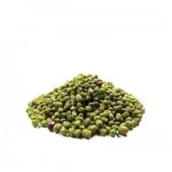 Soja Verde Disfa 5 kg
