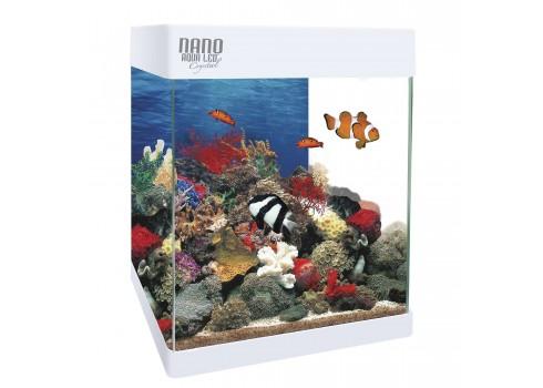 Aquarium de l'ACI KIT NANO AQUALED 20 LITRES