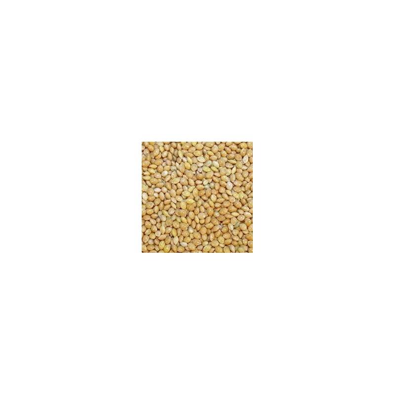 Blanc millet Disfa 4 kg
