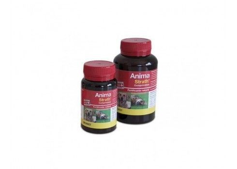 Fortifying tonic in pills ENCOURAGES STRATH 240 tablets