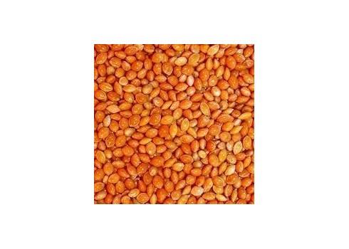 Millet rouge DISFA 4 kg