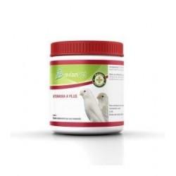 La vitamine A dans la poudre de AVIANVET 125 gr