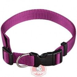 Collar ARPPE NYLON BASIC PURPLE 23-42 CM