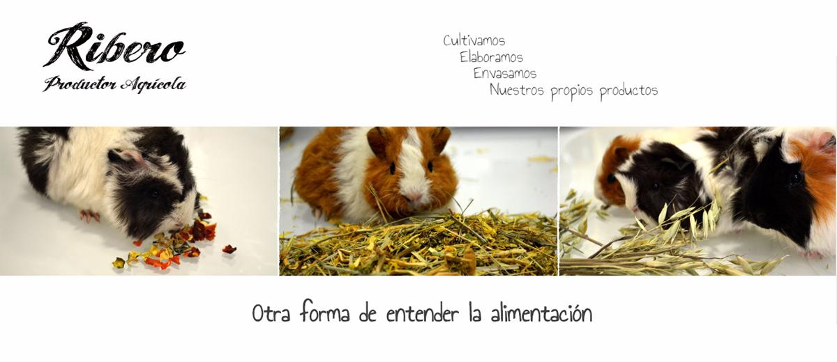 Ribero, nueva marca para roedores