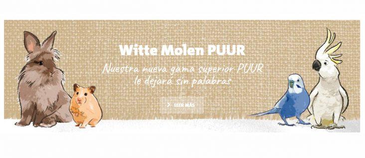 2017-04 witte molen puur