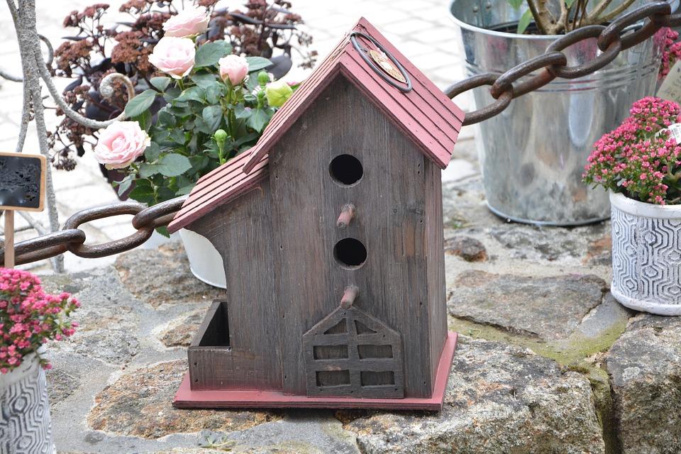 casa para pájaros