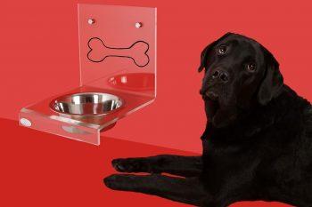Perro y recipiente de comida