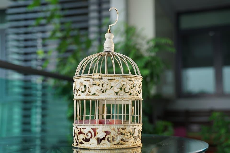 cómo decorar una jaula de pájaros